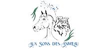 ECURIE NOVUM ECURIE DE PROPRIETAIRES A BORDEAUX Au Coin Des Anim'eau 188